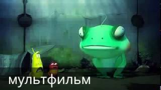 Katta qurbaqa animatsion qisqa