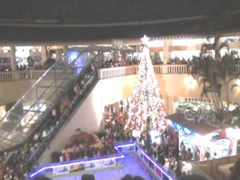 Encendido del arbol de navidad en galerias cuernavaca