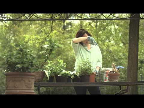 AVANGARD AGENCY: Spot Donna Moderna
