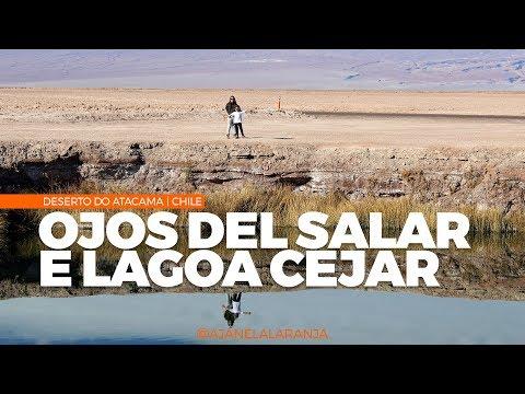 Ojos del Salar e Lagoa Cejar no deserto do Atacama no Chile