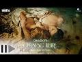 Dima Trofim - Cersesc iubire