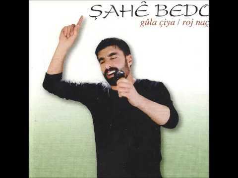Şahe Bedo - Leyla