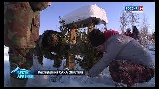 Косули на правильном питании. В Якутии открыли таежные столовые для копытных