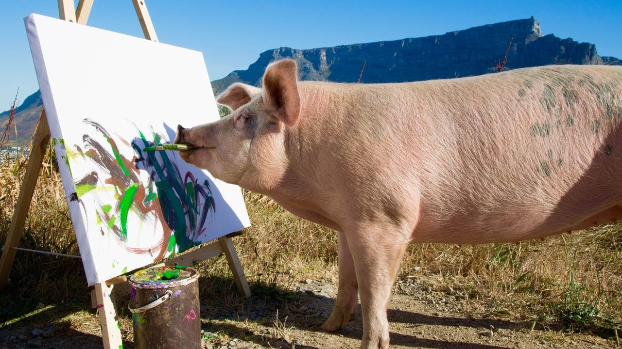 Is Pigcasso The Only Pig That Draws Art