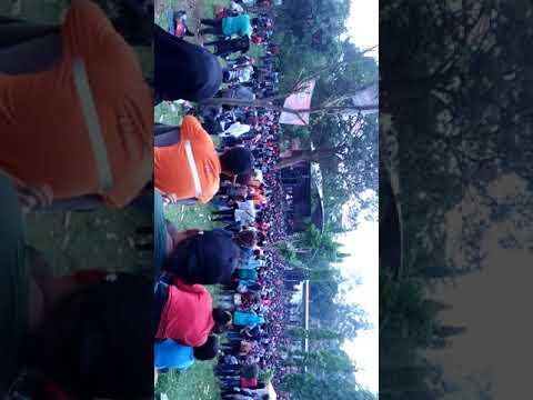 New palapa live curug sewu