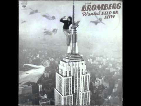 David Bromberg - The New Lee Highway Blues