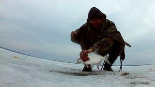 Фидер по последнему льду рыбалка.