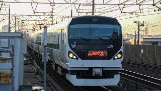 【ダイヤ改正前日】E257系で最後のあずさ3号とあずさ30号