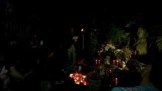 Thao thức cùng Trịnh Công Sơn 2015 - Tôi ơi đừng tuyệt vọng : Ngô Hữu Lợi