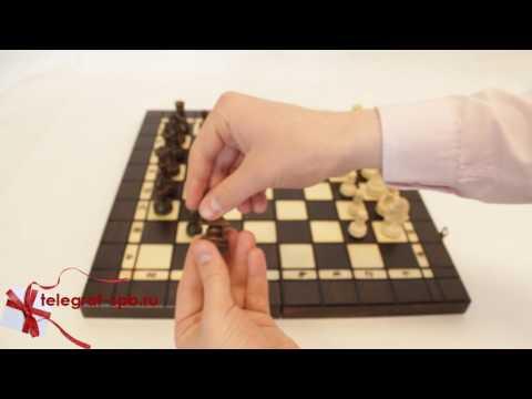 Шахматы, шашки, нарды - Лев (3 в 1, ручная работа)