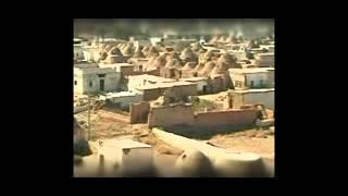 Сирия  Казахи в Шаме  Нужно жить!