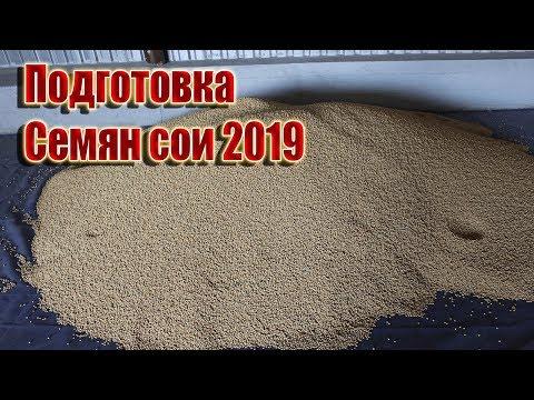 Подготовка семян сои 2019 г.
