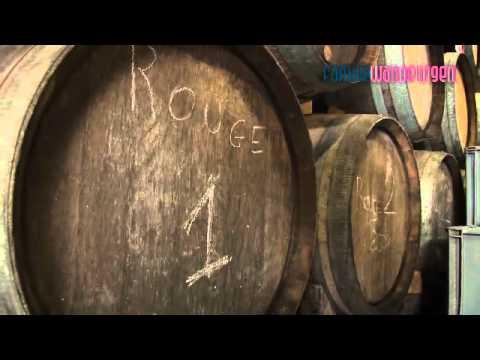 Champagne in de Aisne