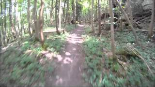 Chanctonbury Ring Lions Trail downhill