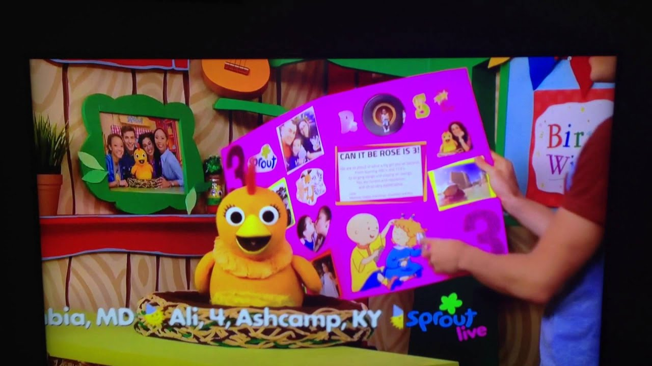 Tias birthday card on sprout tv youtube bookmarktalkfo Images