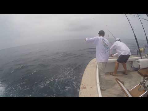 2017 Offshore World Championship | Bermuda Big Game Classic | Blue Marlin