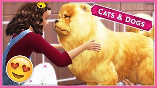 BECOMING COMPANIONS WITH HER DOG🤗😍 // The Sims 4 | Cats & Dogs #7