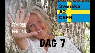 Lär dig svenska - Dag 7- Fem ord per dag - Lär dig svenska - A2-CEFR - 71 undertexter