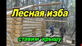 Лесная изба.Қоямыз шатырын #3. Forest hut.Put the roof.