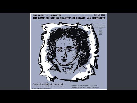 String Quartet No. 6 In B-Flat Major, Op. 18: II. Adagio Ma Non Troppo