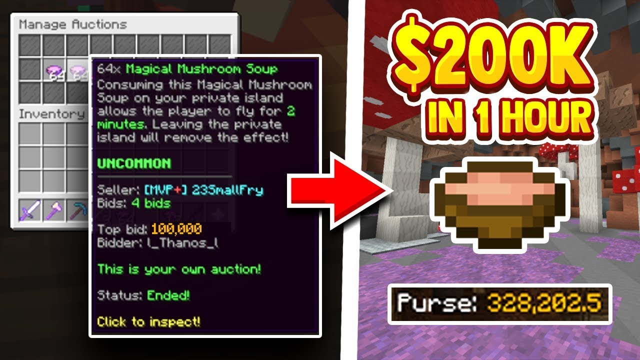 BEST WAY TO MAKE MONEY FOR HYPIXEL SKYBLOCK! (EASY GUIDE)
