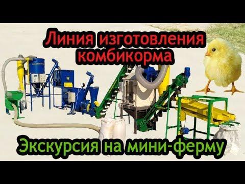 """Линия по производству комбикормов """"АРТМАШ"""": экскурсия на мини-птицеферму"""