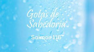 GOTAS DE SABEDORIA - SALMOS 116