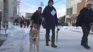 秋田犬発祥の地とされる秋田県大館市で1日、今年の干支(えと)「いぬ」に...