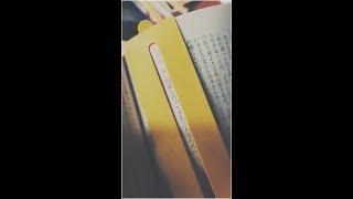 WEAVER「栞 feat.仲宗根泉(HY)」Lyric Video for Smartphone / Shiori feat.Izumi Nakasone(HY)