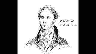 Fernando Sor Op 35 No. 14 Exercise in A Minor