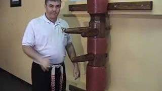 American Kenpo - Mohamad Tabatabai - 10 Combination 2