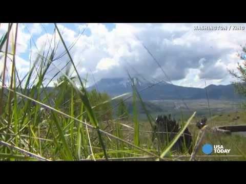 Survivors of Mount St. Helens blast recall eruption 35 years later