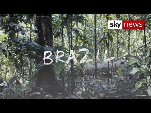 Hotspots: Surge in deforestation in Amazon rainforest
