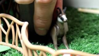 СЕМЕЙНАЯ ФЕРМА 3 Развивающий мультик для детей изучаем животных хороший