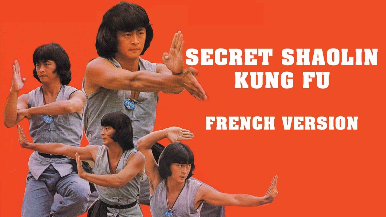 Download Wu Tang Collection - Secret Shaolin Kung Fu (French Version)