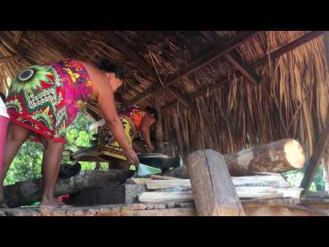 EcoCircuitos Panama:  Transformative Travel