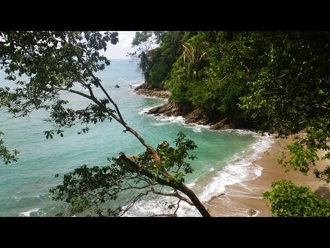 Explore Manuel Antonio Beach in Costa Rica