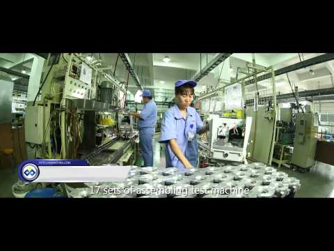 A Chinese hydraulic manufacturer