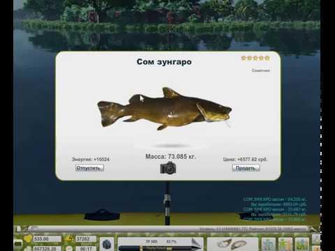 Прохождение игры трофейная рыбалка