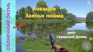 Русская рыбалка 4 река Северский Донец Солнечный окунь у лагеря
