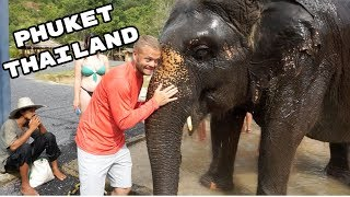 Green Elephant Sanctuary in Phuket Thailand