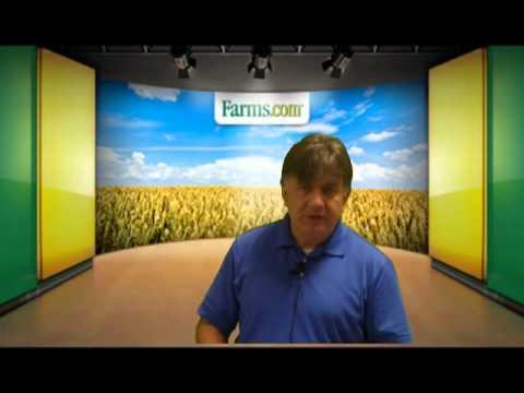 Statistics Canada Grain Production Report:  Lower Canola Production.