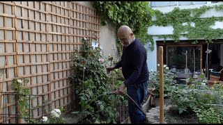 Jim Dine In His Garden, Paris | The Botanical Drawings On Gray Viewing Rooms