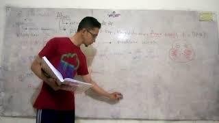 Pembicara: Dr. Hernayati M. Hutabarat, SpKK, FINSDV. MC: Dr. Christina..