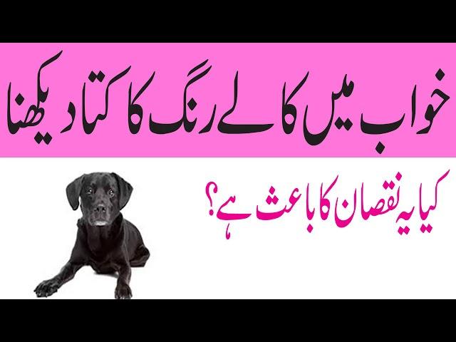 Khawab Ki Tabeer In Urdu Khawab Mein Kutta Dekhna Khawab