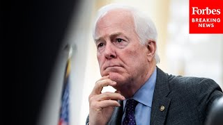 Cornyn Complains That American Jobs Plan Is a 'Trojan Horse,' Calling It Green New Deal 2.0