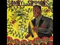 Sonny Simmons Quartet - American Jungle Theme