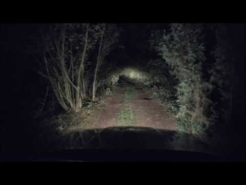 Night Drive In Creepy Forest - Zepter00