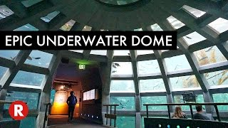 This Dome Is Amazing // Seattle Aquarium
