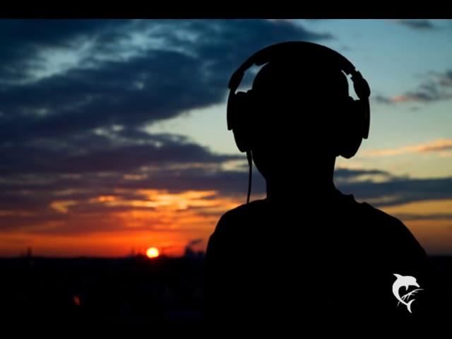 Fritz & Paul Kalkbrenner - Sky and Sand (Original Mix) #1